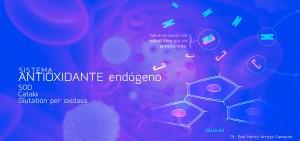 Sistemaantioxidanteendogeno