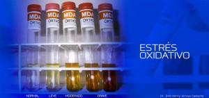 Estres-oxidativo