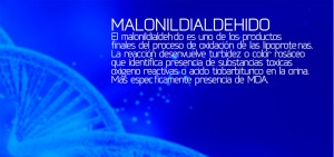MALONILDIALDEHIDO